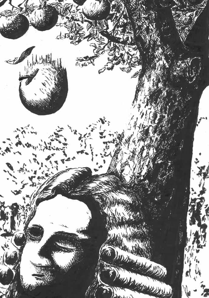 Illustration Newton fällt Apfel auf den Kopf