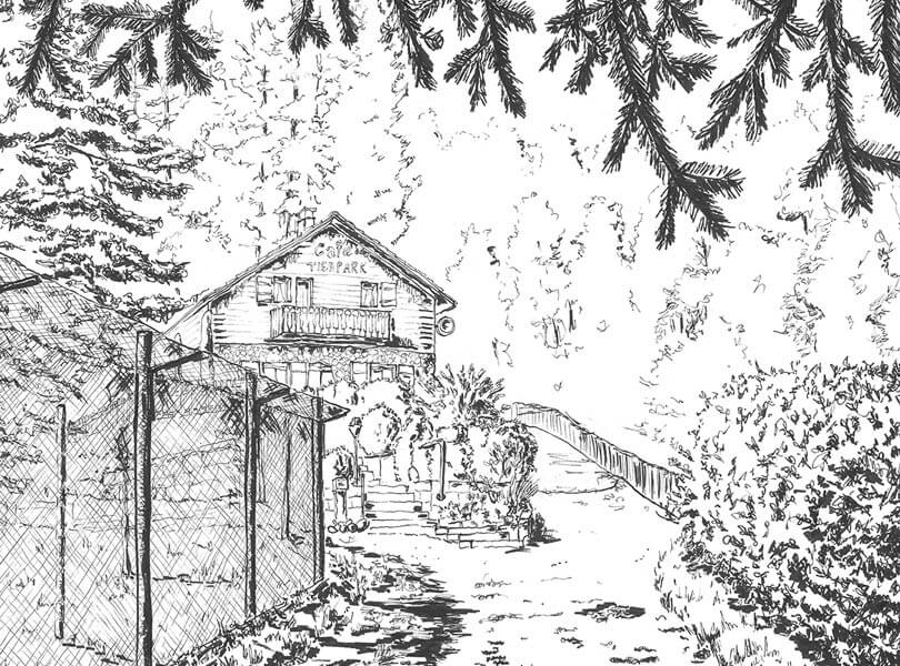 schwarz weiss zeichnung Tierpark Bad Zurzach